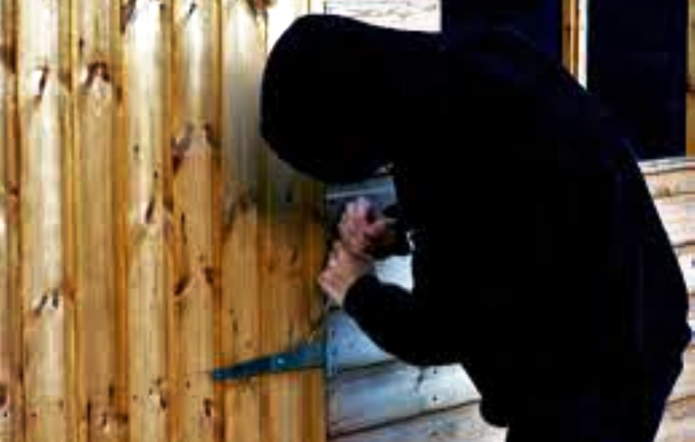 Garden Sheds Yeovil south somerset news: lock up your garden sheds – there are thieves